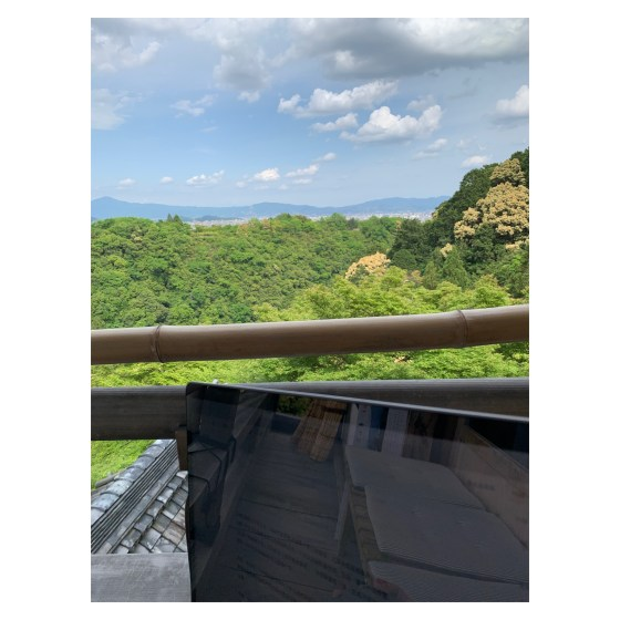 完成這篇文章的時候,正在坐在嵐山的寺廟裡看著這樣的風景~