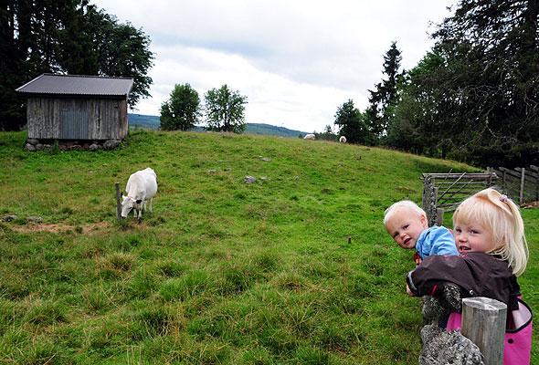 Lalumsvangen i Stange (foto fra HANEN)