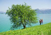 Turisme er nøkkelen til økonomisk vekst verden over