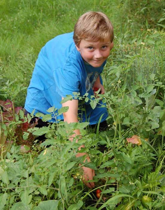 Kids Gardening Project