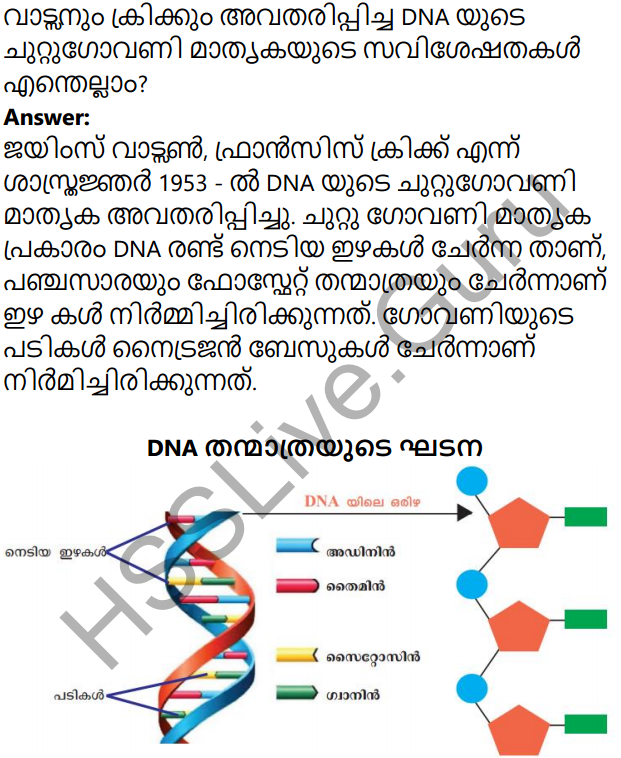 Kerala Syllabus 10th Standard Biology Solutions Chapter 6 Unravelling Genetic Mysteries in Malayalam 13
