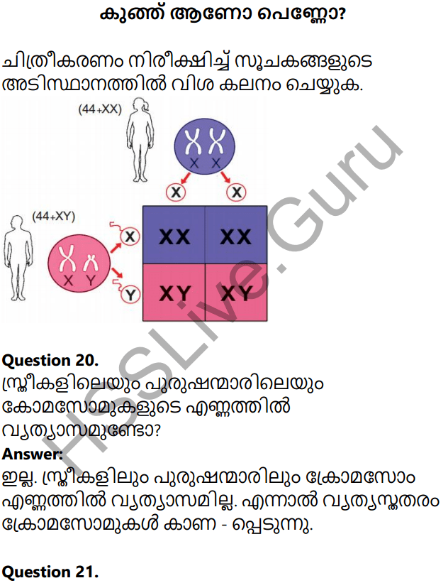Kerala Syllabus 10th Standard Biology Solutions Chapter 6 Unravelling Genetic Mysteries in Malayalam 23