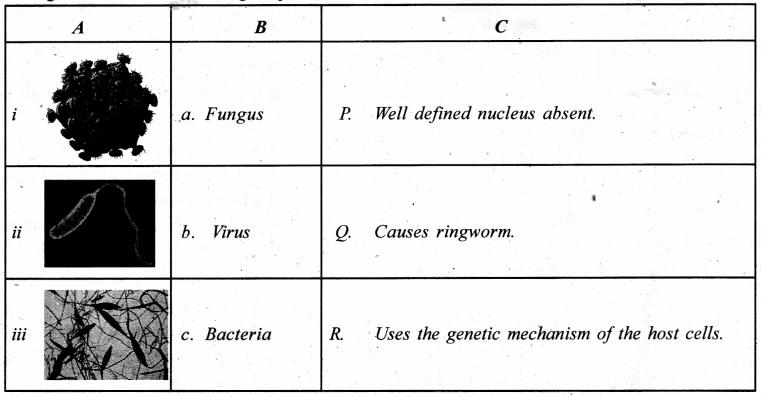 Kerala SSLC Biology Chapter 4 Questions Keeping Diseases Away 8