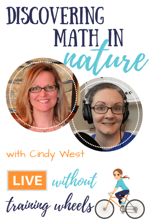 Maybe you're not a math person. Maybe you prefer nature walks. But what if you could discover math in nature? Let's chat with Cindy West about it!