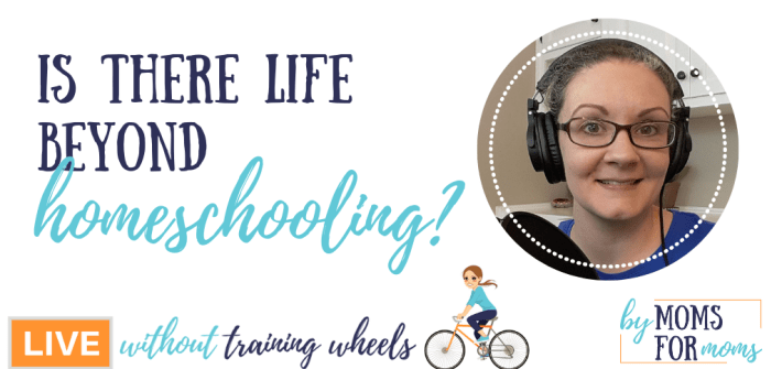 So you've decided to homeschool. It definitely take a lot of time and some sacrafice to make it work. But is there time for anything beyond homeschooling?