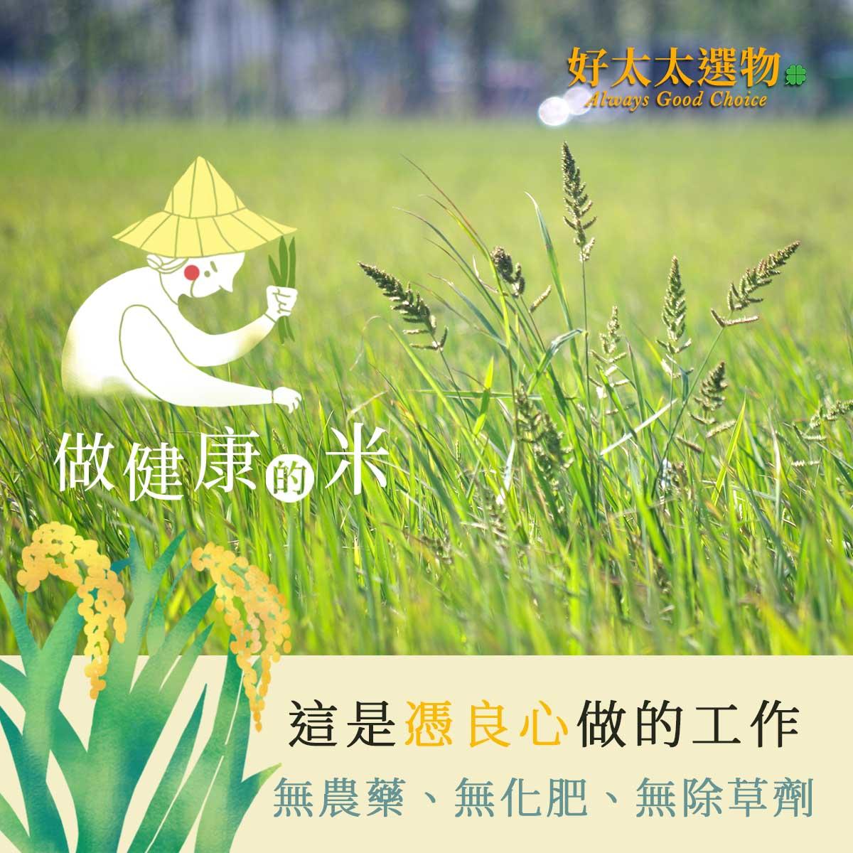 只做健康的米,做農職人也有他的社會責任,做食材的更是要憑良心做。