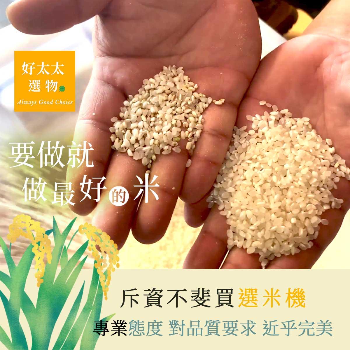 左邊為去除糠層的米,模樣已經很接近白米,右邊為經過選色機選別、去除雜粒後的成品,品質優良。