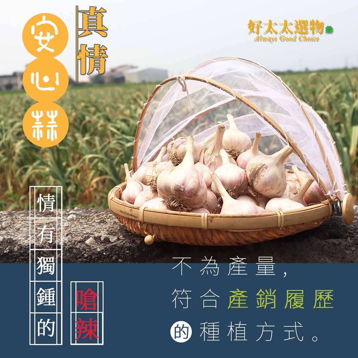 蒜頭少有的高安全標準,符合產銷覆歷高規的種植方式。