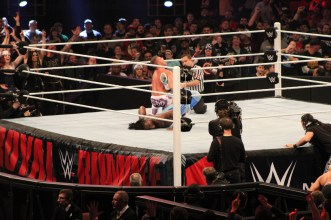 Royal_Rumble_2015 (20)