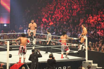 Royal_Rumble_2015 (31)