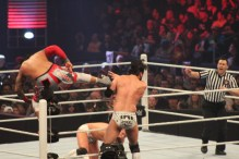 Royal_Rumble_2015 (32)