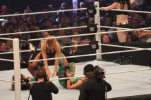 Royal_Rumble_2015 (36)