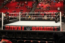 Royal_Rumble_2015 (5)