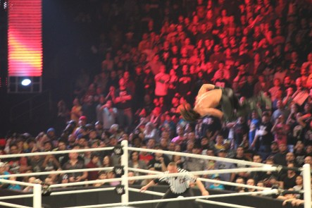 Royal_Rumble_2015 (56)