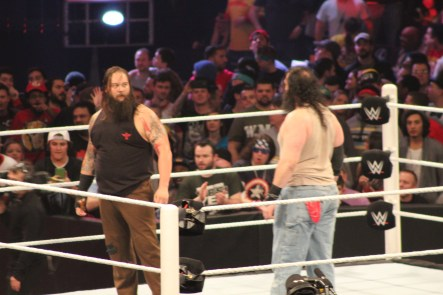 Royal_Rumble_2015 (64)