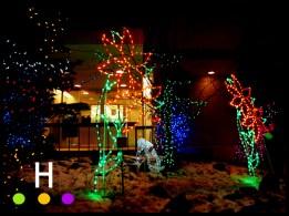 Red Deer City Hall Park Christmas Lights