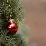 Christmas tree branch with ornament