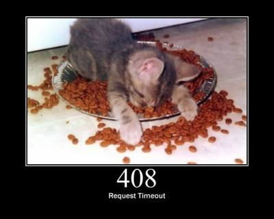 An illustration of the 408 HTTP error code (Request Timeout) showing a kitten napping in a food bowl