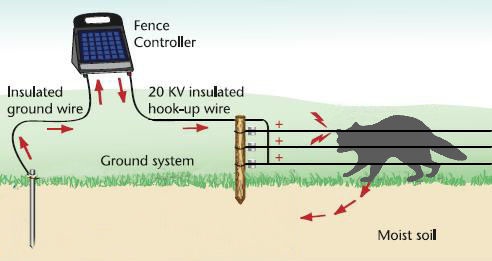 How To Wire An Electric Fence Diagram Electric Fence For Dummies
