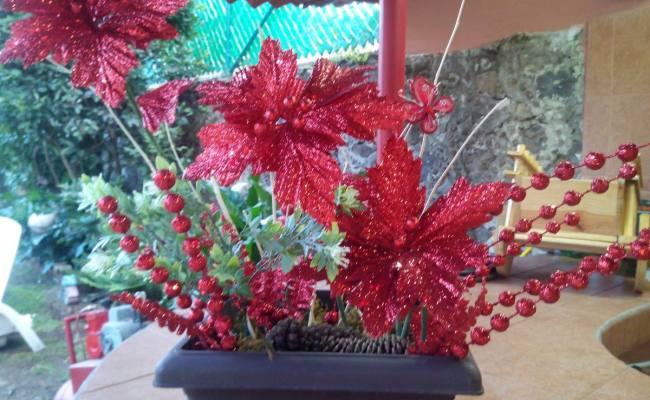 Arreglo Floral Navideño Con Nochebuenas 850 00 En