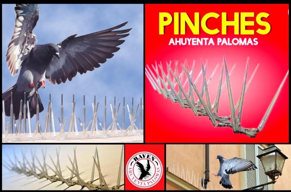 medium resolution of cuervo ahuyenta espanta palomas licencia original raven 440 00 en mercado libre