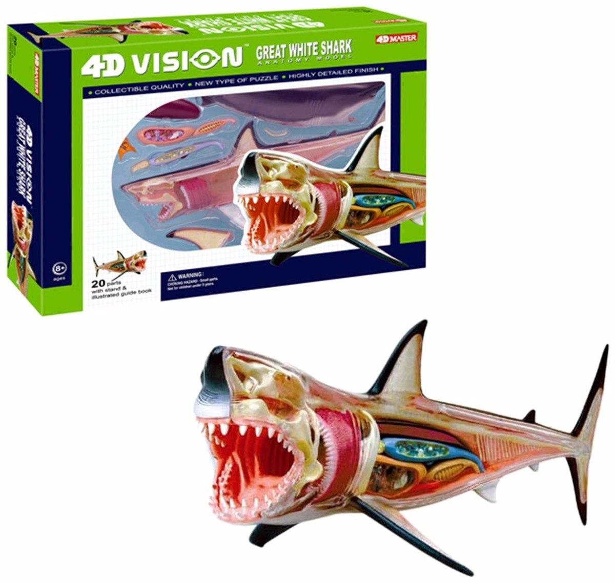 Esqueleto Anatomia De Tiburon Blanco Realista 4d