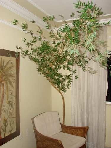 Folhas Artificiais Bamb Moss 10 Cm  Melhor Preo  R
