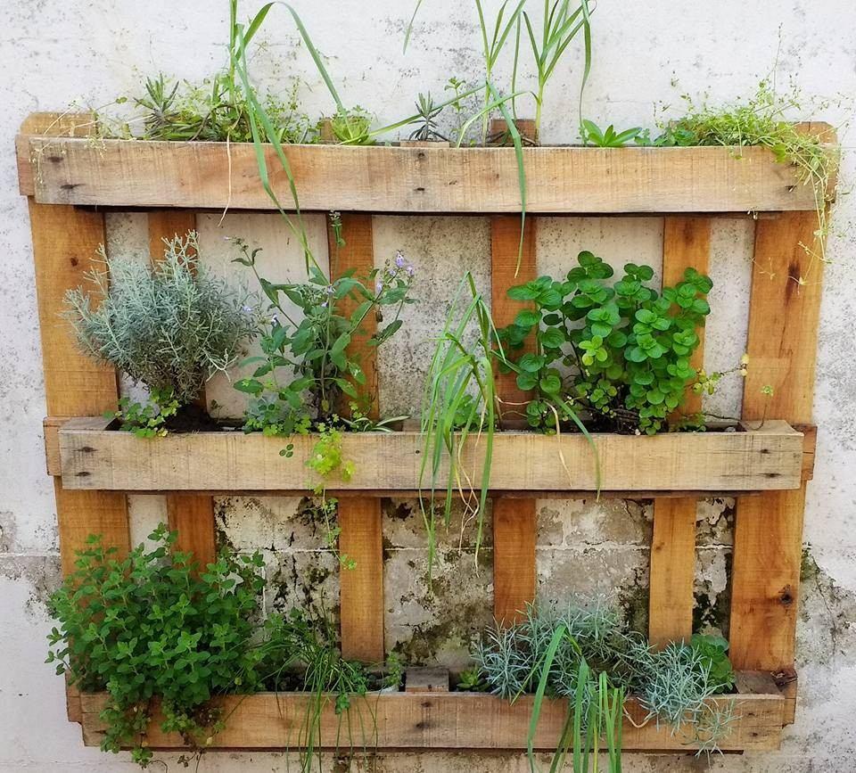 Jardin Vertical Huerta Macetero Colgante Pallet Reciclado