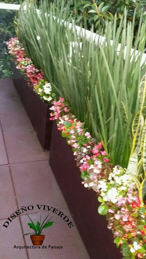 Jardineras De Fibra De Vidrio   40000 en Mercado Libre