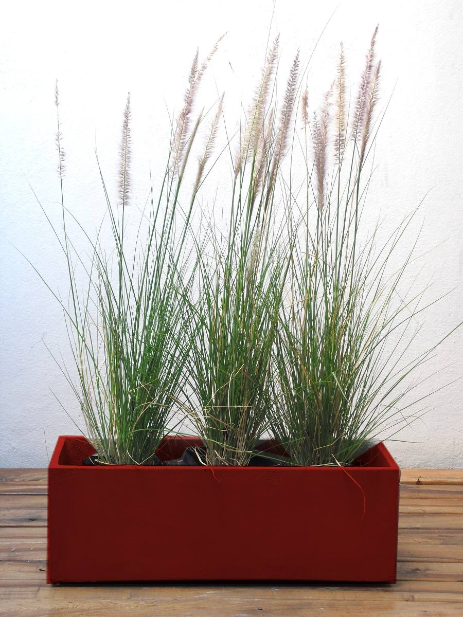 Maceta Jardinera 100x22cm  Plantas Para Tu Comercio