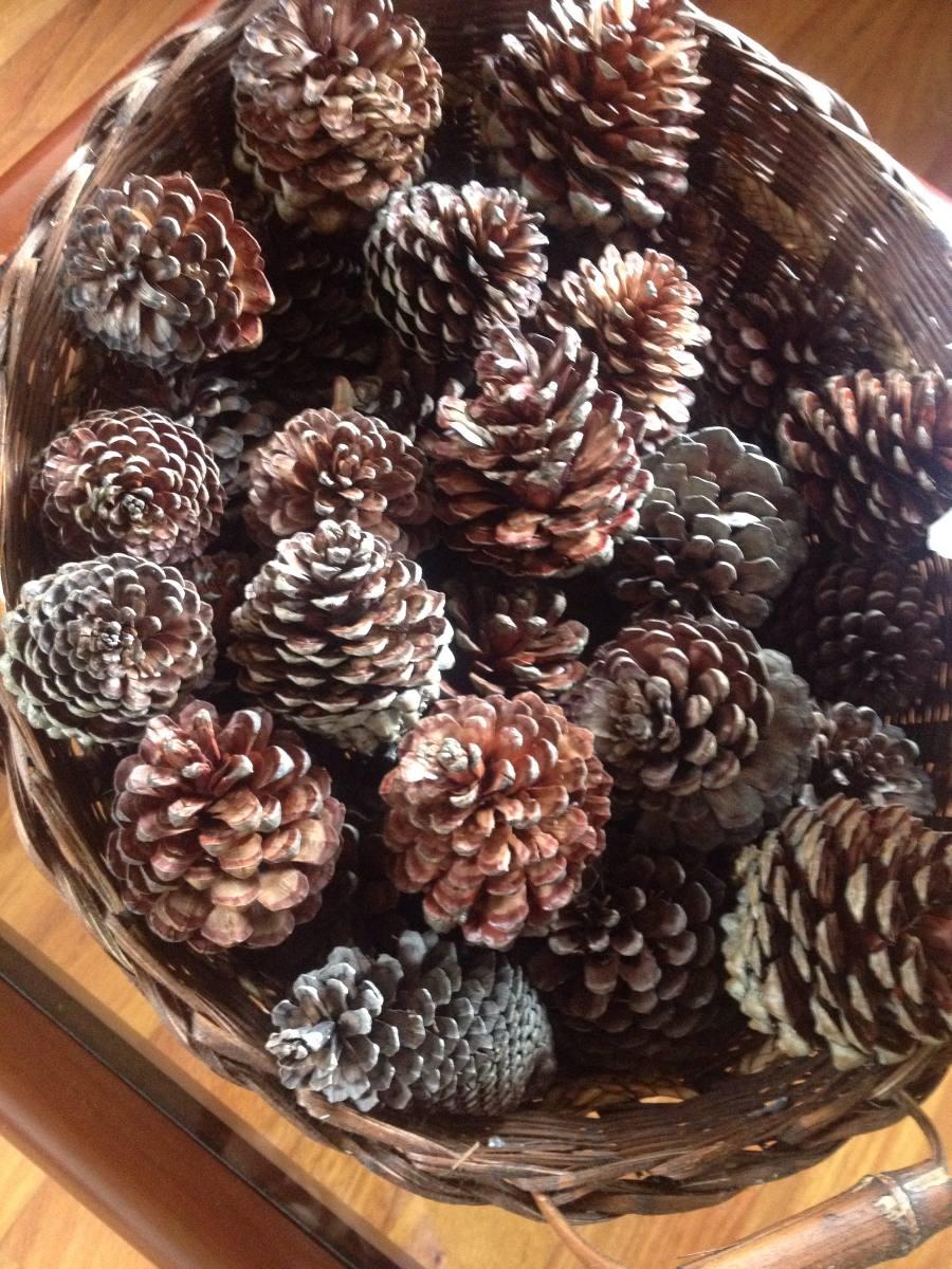 Pias De Pino Natural Decoracin Arreglos Navidad