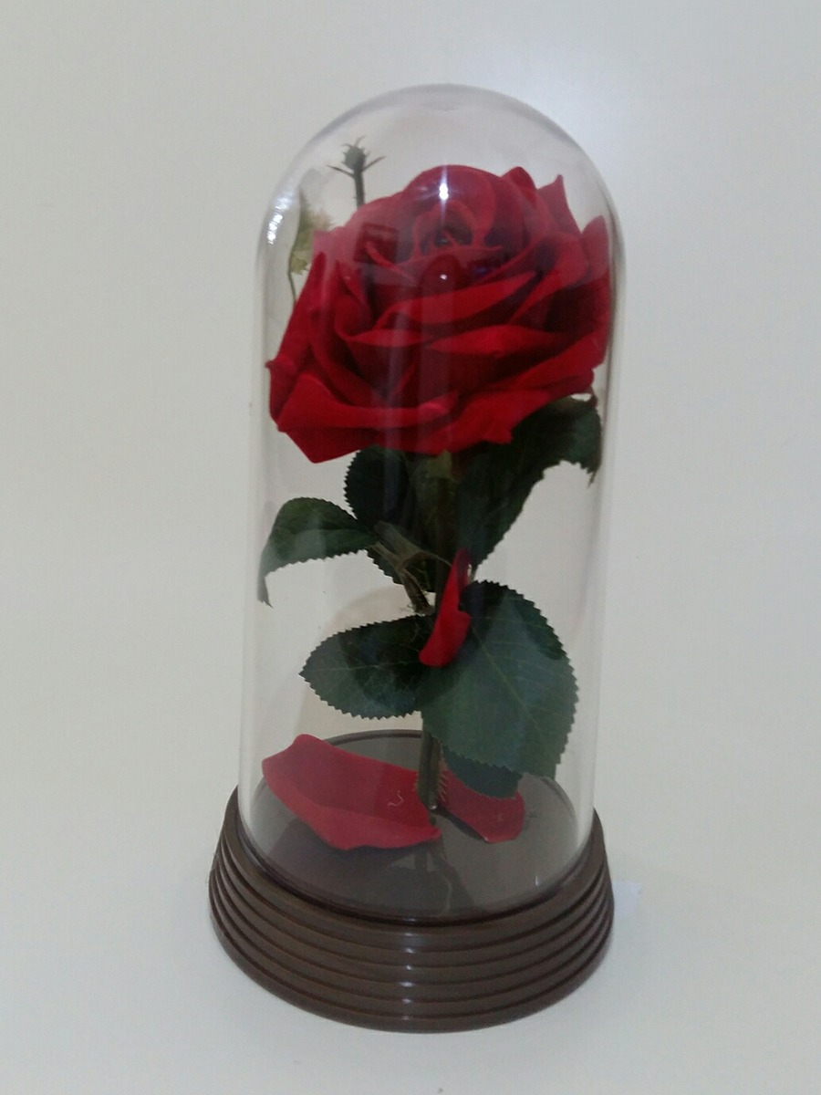 Promoo Redoma Rosa Encantada  Bela E A Fera Presente