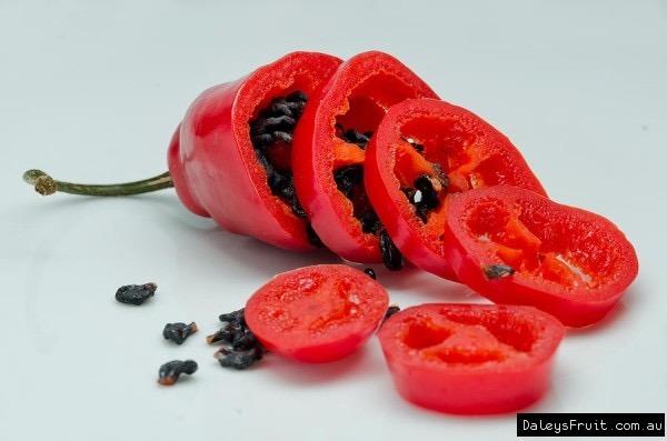 Sementes Pimenta Peruana Rocoto Vermelha Aji Rojo P Mudas