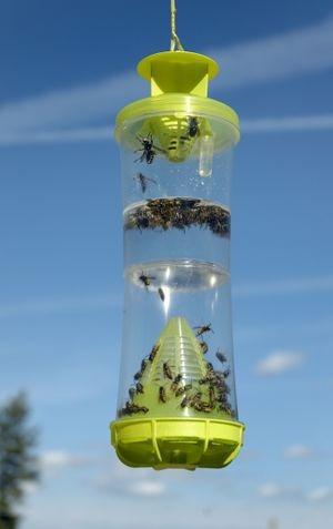 Trampa Reusable Avispas Abejas Moscas E Insectos Voladores
