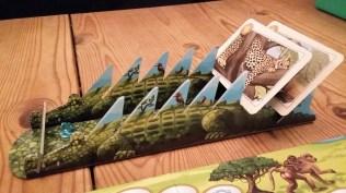 Crocodile photo album