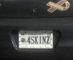 Redskins License Plates