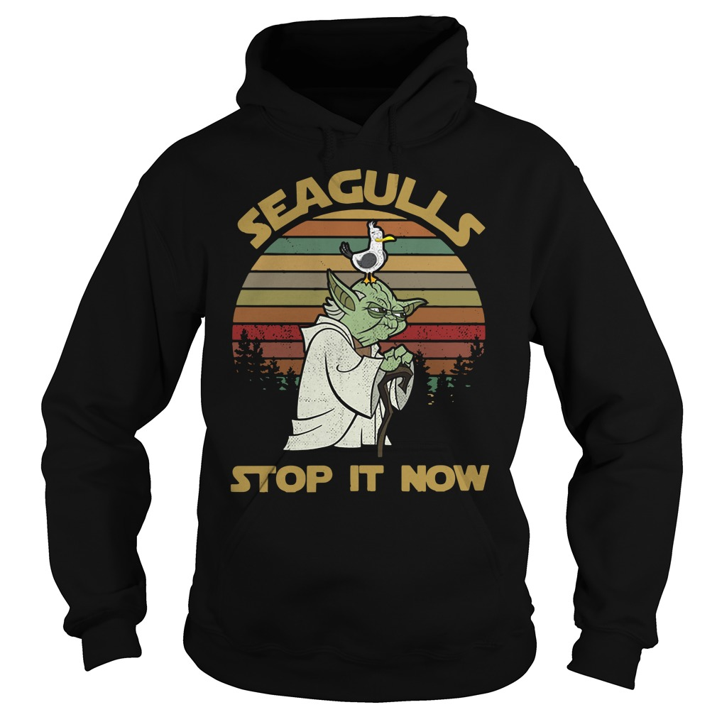 Seaguls stop it now Hoodie