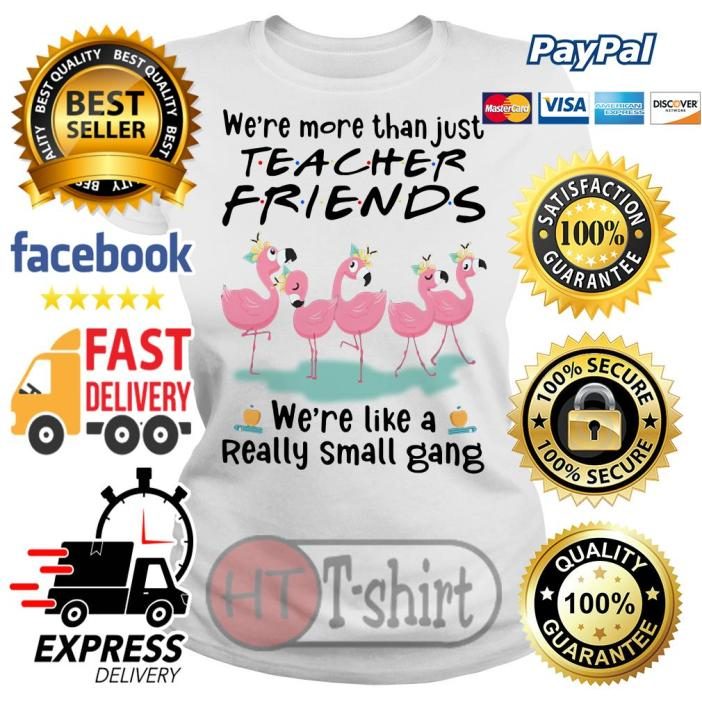 Flamingo we're more than just social worker friends we're like a really small gang Ladies tee