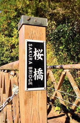 八橋小道 ラブロマンスロード 桜橋