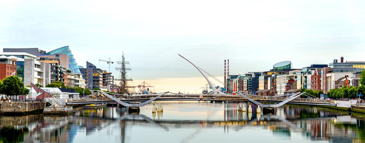 Contact day: the Irish market