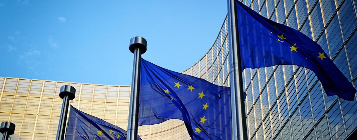 Contact day: Europese instellingen en internationale organisaties