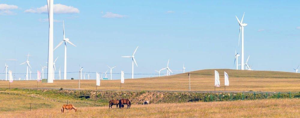Economic mission to Mongolia