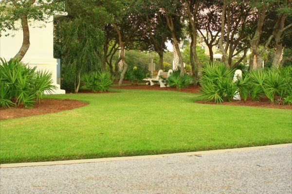 residential lawn care and landscape