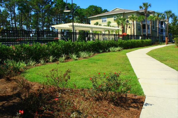 commercial landscape maintenance