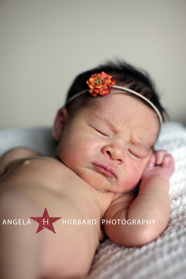 Vancouver newborn photography http://www.hubbardphotography.com