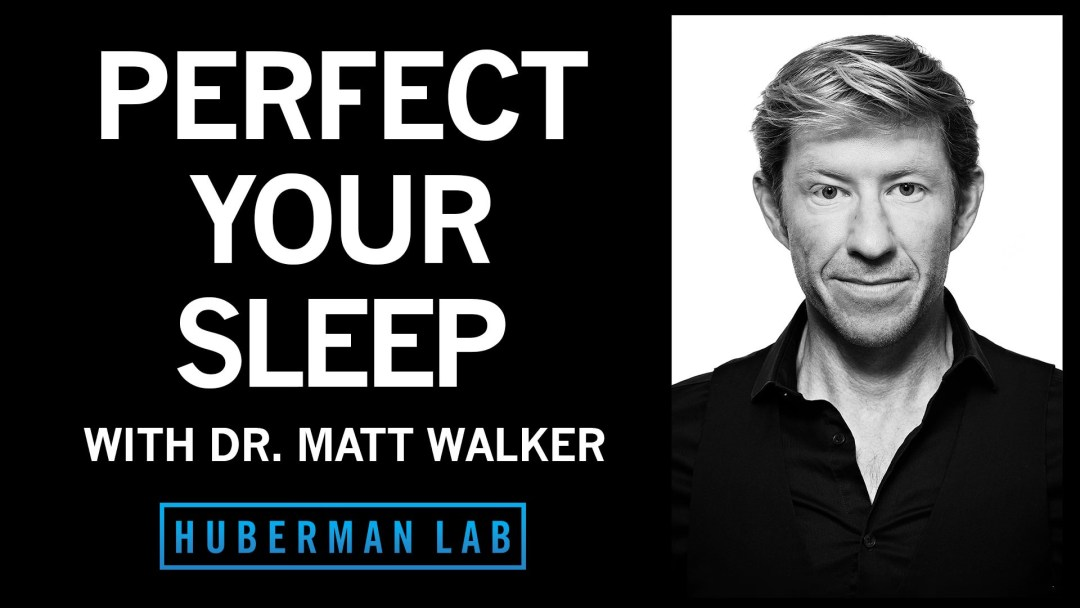 Huberman Lab Podcast Episode 31 Title Card