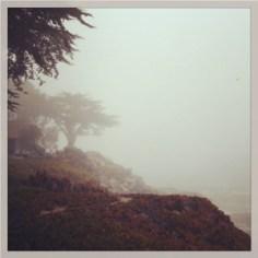 Foggy West Cliff