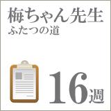 drume16
