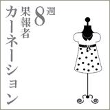カーネーション8果報者