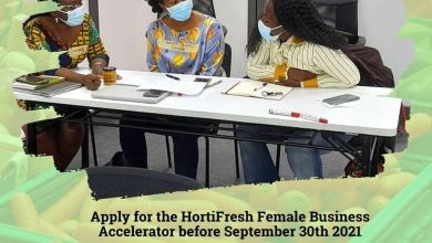 Photo of HortiFresh Business Accelerator 2021 for Female Agritech Founders